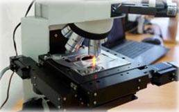 Raman microscope RamMics M532